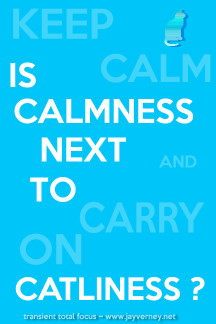 Is Calmness next to Catliness